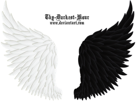 Angel Wings 06 Medium Size PNG by Thy-Darkest-Hour