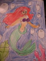 Ariel drawing by MewMewMinto1123