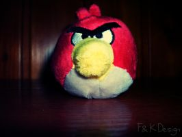 Angry Bird :) by Super-Studio