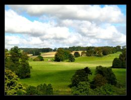 Alnwick Fields by celeste