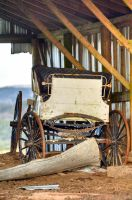 Stage Coach found in old barn by WitchDoctorTim