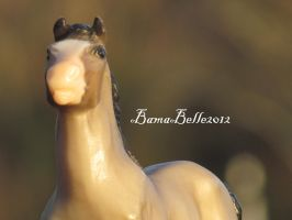 Chanceys face by BamaBelle2012