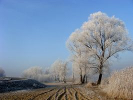 Embraced in Frost by A-m-b-e-r
