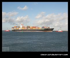 Container Over The Sea by ciscotjuh