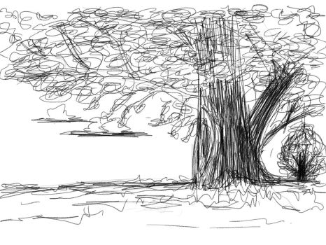 SKETCH A TREE by weltonrosa
