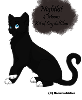 Nightkit by Hadesclaws
