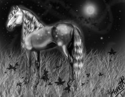 beauty of the night by anita-t14