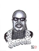 Stevie by kylehaase