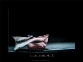 Alone in the dark by Bojkovski