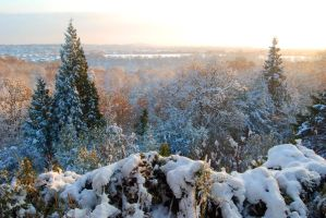 Snow Rusthall Common by CitizenJustin