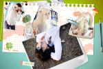 Honey and Clover_my notebook by hybridre