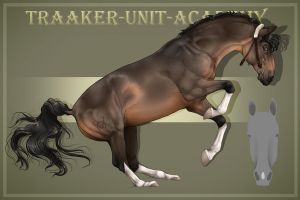 Traaker Import 135 |Custom by BRls-love-is-MY-Live