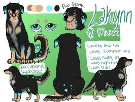 lakynn, my new main character!!! by wolfhailstorm