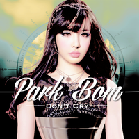 Park Bom - Don't Cry by puppykim