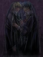 Harry + Draco + invis cloak by bluefeathers