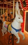 Great Plains Carousel 68 by Falln-Stock