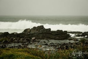 Forster  Storm on the Rocks by AdaraRosalie
