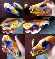 painted skulls by Anklebones