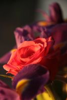 Flowers by Purple-Ephemerality
