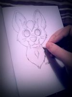 Traditional drawing for once! by LittleRock3DD