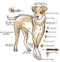 Dog :: Mishka Reference Sheet by ArcticLily
