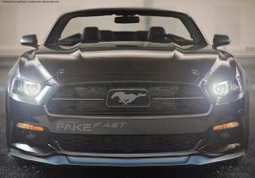 2015 Mustang - Customization by CynderxNero
