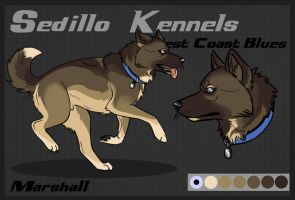 SK's West Coast Blues: Marshall by Sedillo-Kennels