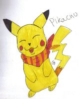 Pikachu fan pics by grapsen
