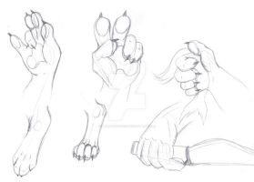 Anthro Paws - training by LawhanWoves