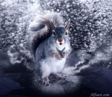 Ice Squirrel by AlexandraF