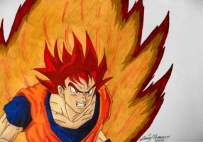 The Super Saiyan God by gokujr96