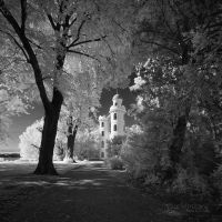 _ Pfaueninsel I _ bw by EYELIGHTZONE