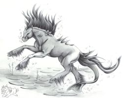 DO NOT trust the Kelpie by LadyInsomnia22