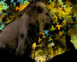 Fun with lion and brushes by c1p0