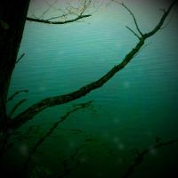 Green water by marisamudd