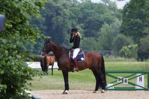 Lusitano Standing Short Break Stock II by LuDa-Stock