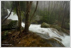 Shillalah Creek by TRBPhotographyLLC