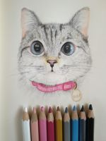 NALA. My new Cat coloring drawing artwork. by Nichapon