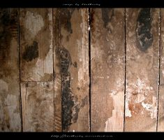 Wood Flooring with Glue 3 by blut4rsky