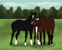 3 Little Foals by S1oane