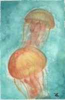 Jellies by Lisbeth1994