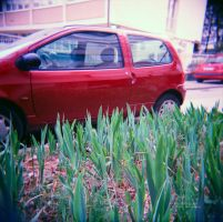 Red car by neodium
