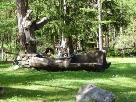 FOUNTAIN AND BENCH IN A TREE by isabelle13280