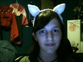 Inu Ears for Wig by kagome-twin15