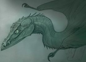Flock Wyvern by SammyTorres