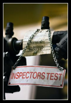 Inspectors Test by panfah