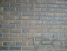 brick wall 2 by Exor-stock