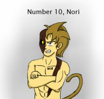 Number 10 - Nori by JoeyTheMostAwesome
