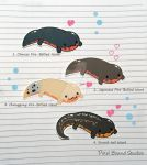 Fire-Bellied Newt Stickers and Magnets Set #1 by pixelboundstudios