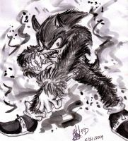 The Werehog by Hannara459